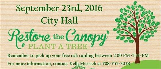 Oak Sapling Giveaway